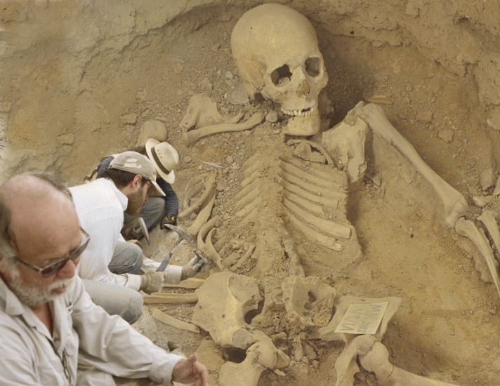 another_giant_human_skeleton