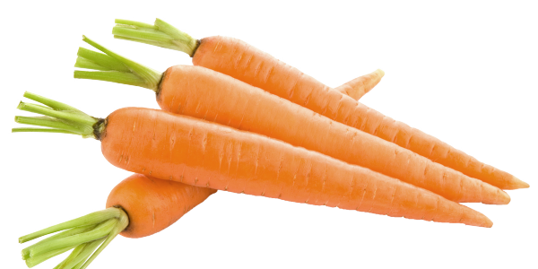 carrot_PNG49851-600x300