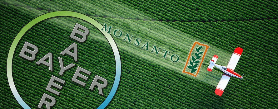 bayer-monsanto-1-890x350